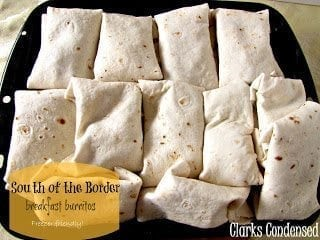 Freezer Ready Breakfast Burritos - south of the border flavor