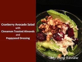 cranberry avocado salad with cinnamonm1 50 Delicious Dairy Free Recipes