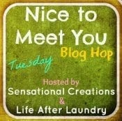 Nice To Meet You Blog Hop