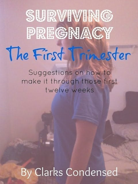 Surviving Pregnancy: The First Trimester