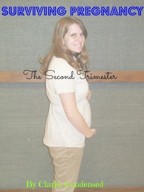 Surviving the Second Trimester of Pregnancy