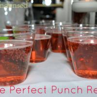 Best Punch Recipe