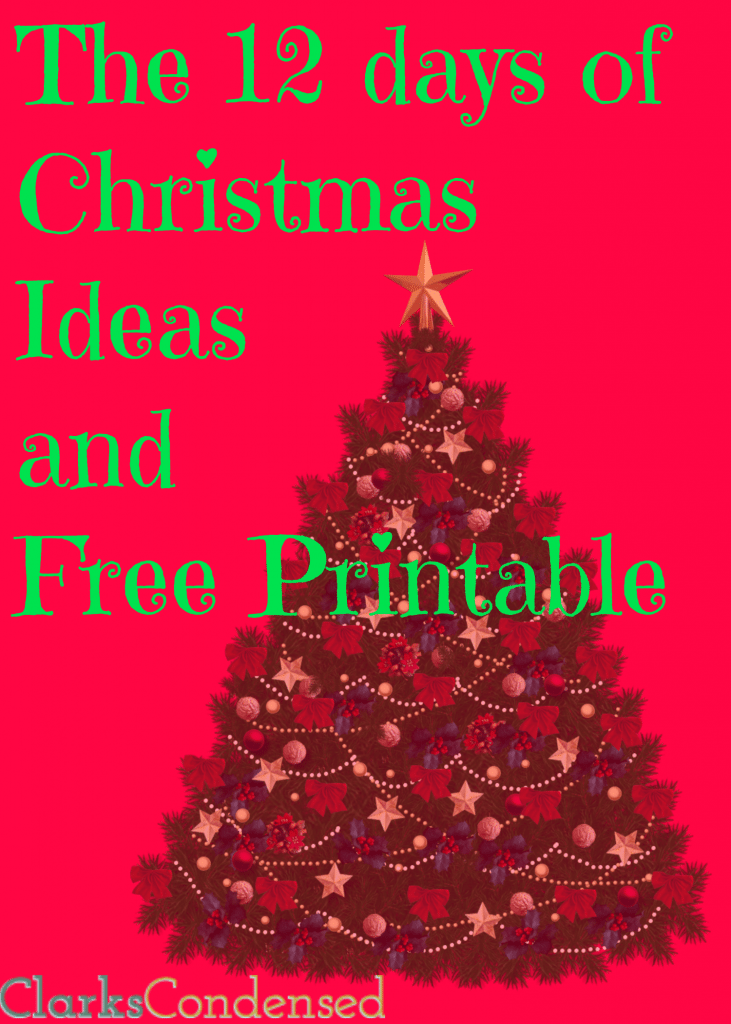 photo relating to 12 Days of Christmas Printable called 12 Times of Xmas