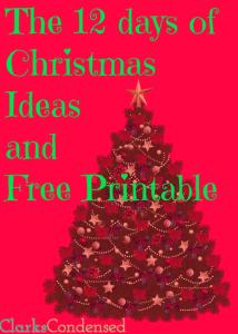 12 Days of Christmas Gift Ideas and FREE Printable