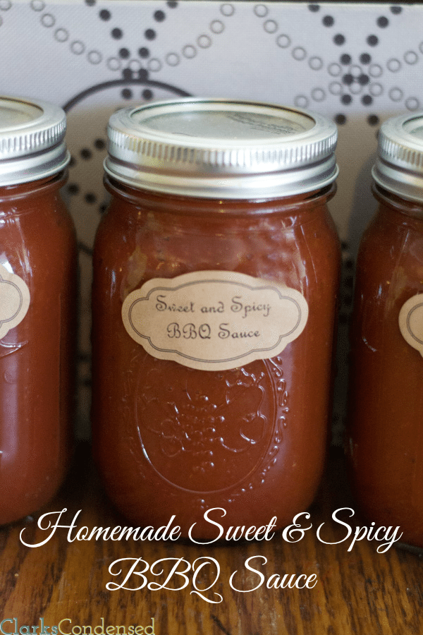 Homemade Sweet and Spicy BBQ sauce and 15 Spice Dry Rub Recipe