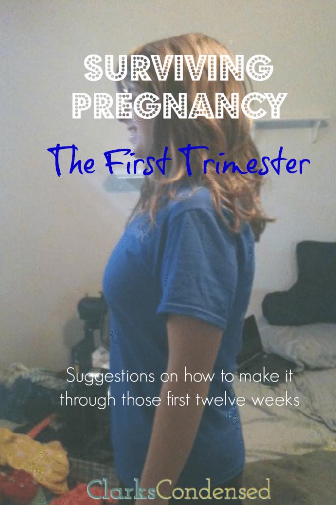 surviving-pregnancy-2 (1)