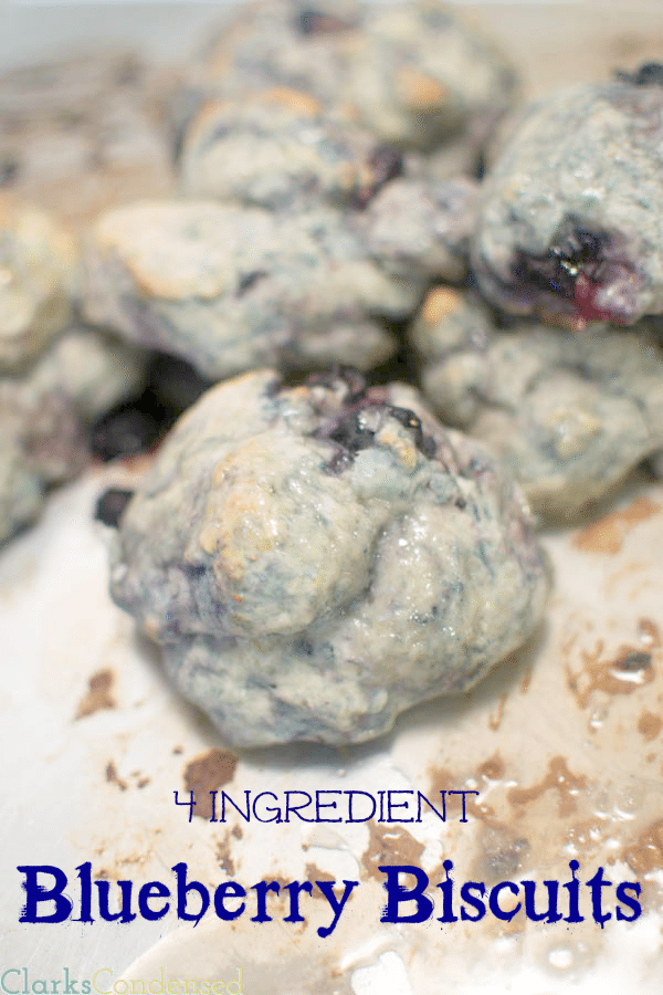 easy-blueberry-biscuits-2