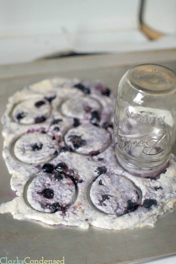 4 ingredient, easy blueberry biscuits by Clarks Condensed