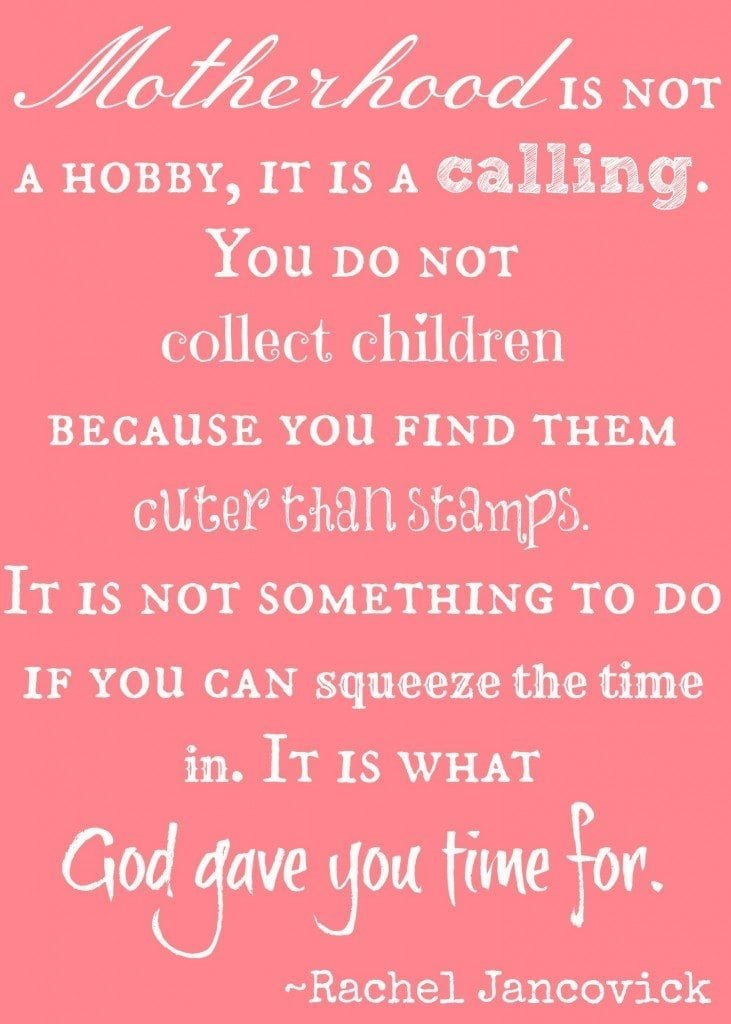 Motherhood is not a hobby