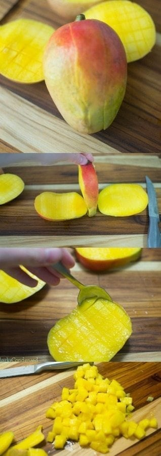 Mangoes are so yummy, but can be tricky to cut! This tutorial shows you exactly how to perfectly dice a mango. Mangoes are great for smoothies, desserts, and salsa!