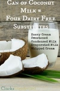 One Ingredient: Four Great Dairy Free Substitutes
