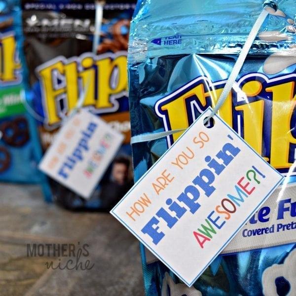 Flipz2