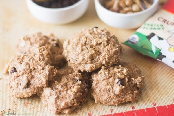 Chocolate applesauce cookies recipe