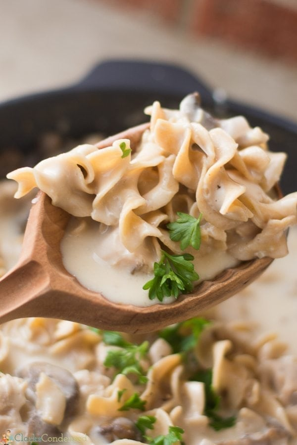 Easy Chicken Stroganoff Recipe