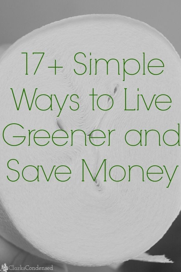17 simple ways to live green and save money for Ways to live green