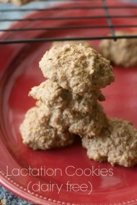 Breast Cancer Risk Factors and Lactation Cookie Recipe