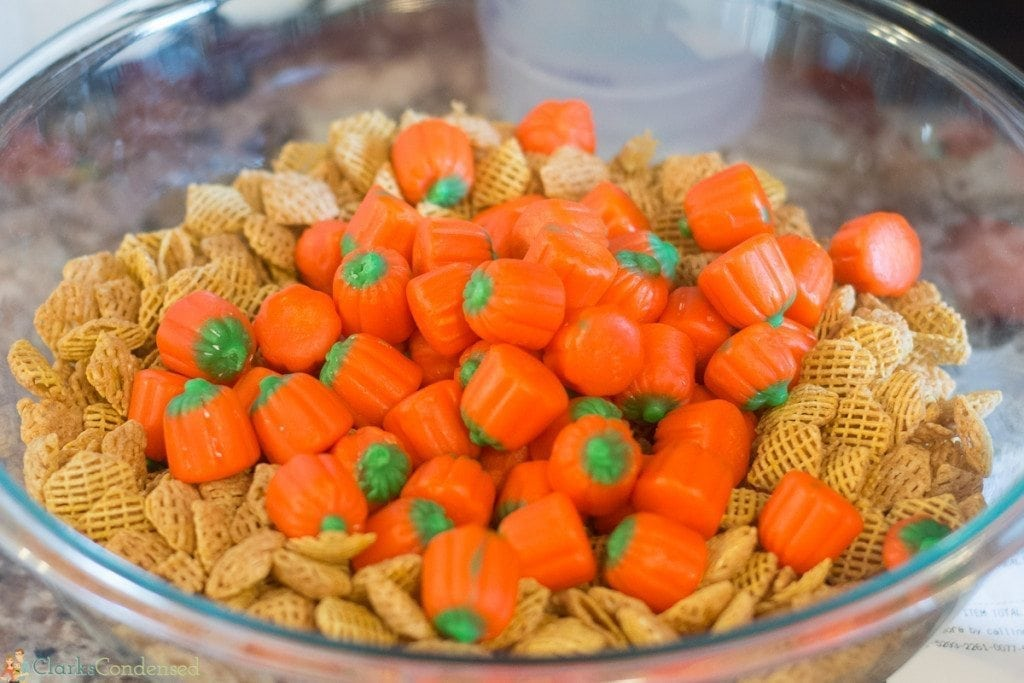 pumpkin-butterscotch-puppy-chow (3 of 11)