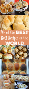 30+ of the Best Roll Recipes