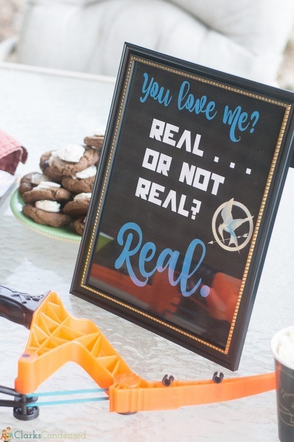 hunger games party ideas (3 of 16)