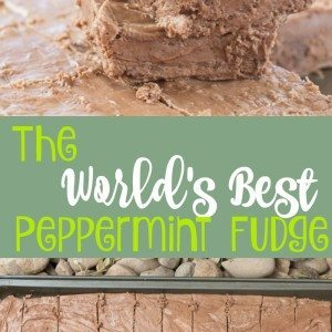 The World's Best Peppermint Fudge Recipe