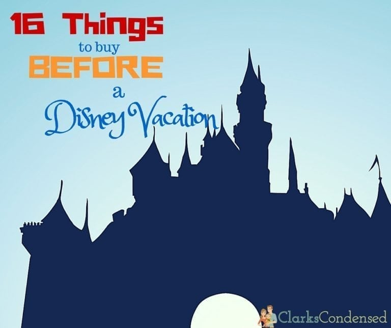 Things to Buy BEFORE You Go to Disney