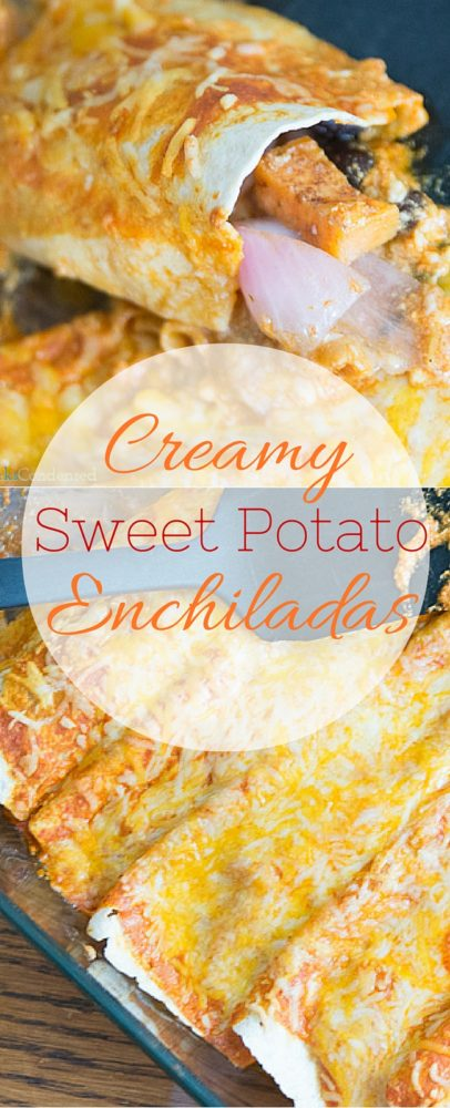 These creamy sweet potato enchiladas are the perfect meatless meal that the entire family will devour! via @clarkscondensed