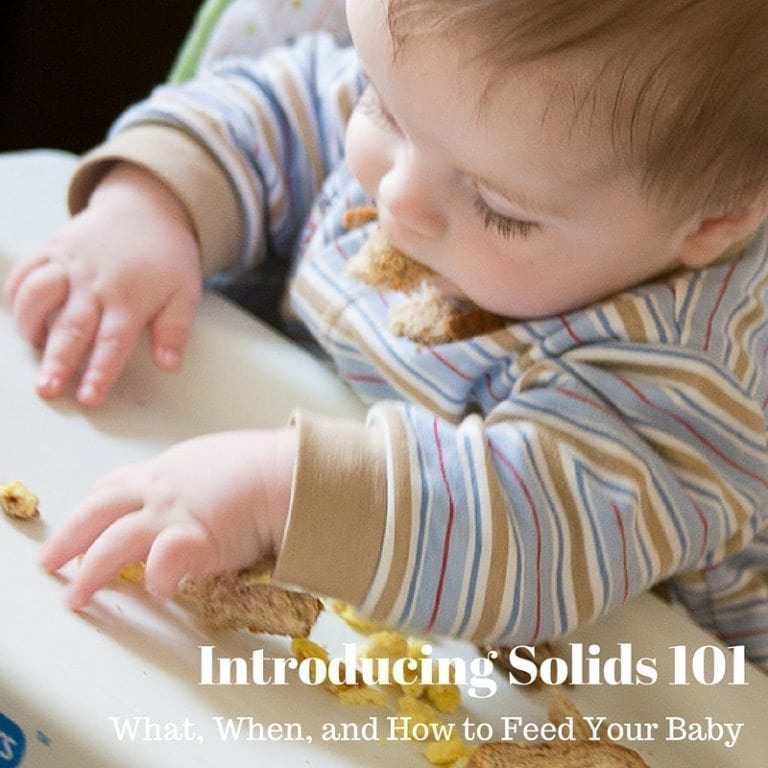 Introducing Solids 101 (2)