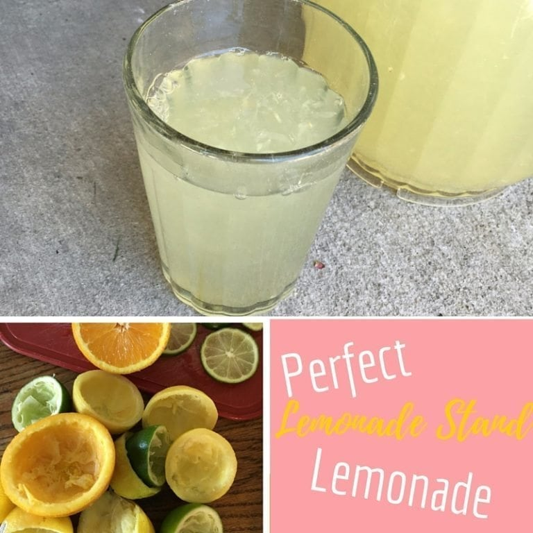 Perfect Lemonade StandLemonade (1)