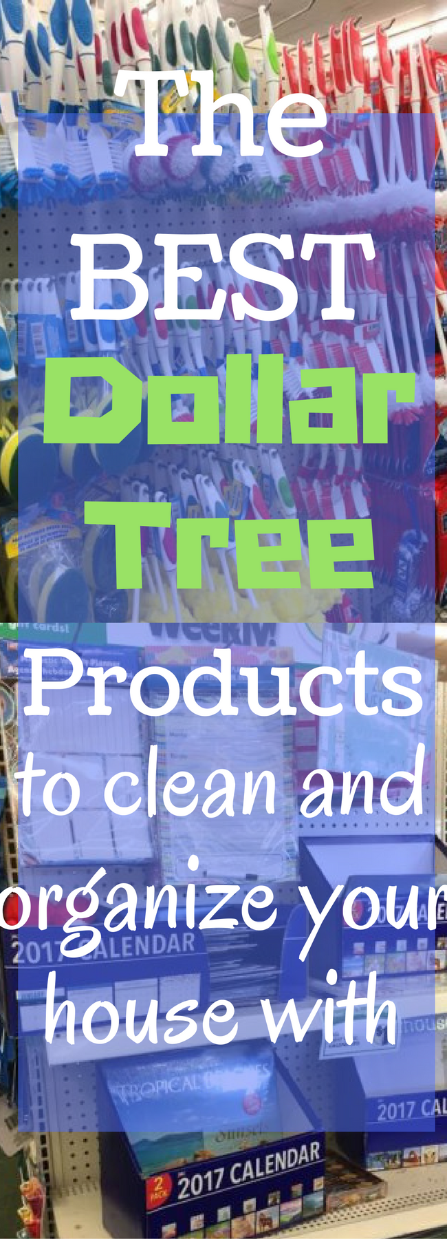 https://www.clarkscondensed.com/thrifty-living/best-dollar-tree-cleaning-organization-supplies/