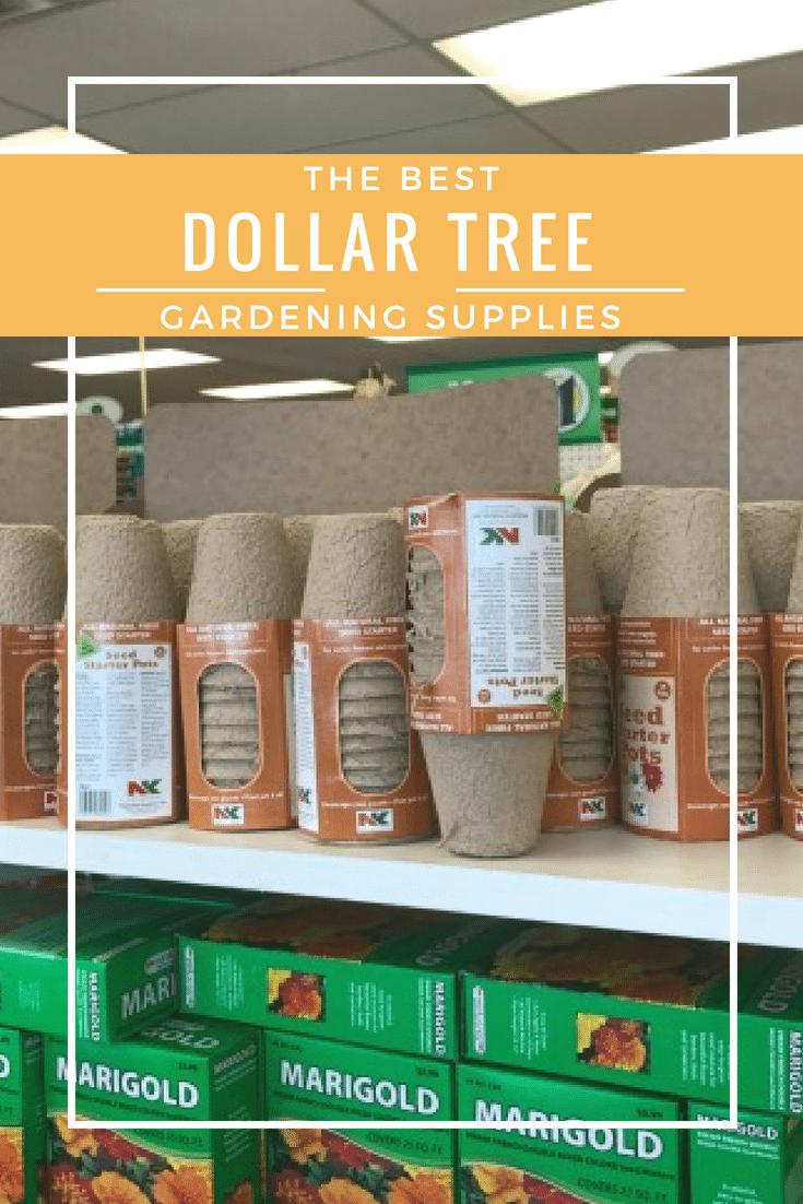 Dollar Store Gardening