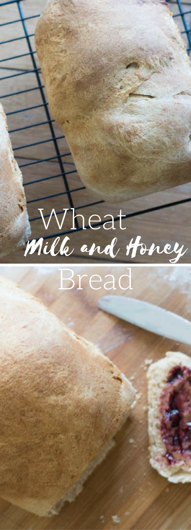 Wheat Bread / Homemade Wheat Bread / Milk and Honey Bread / Wheat Milk and Honey Bread / Homemade Bread / Bread Making