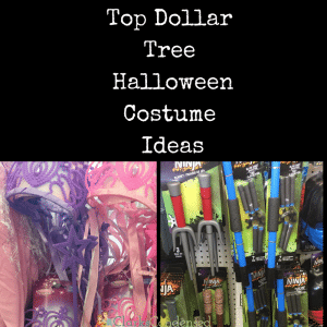 The Best Dollar Tree Halloween Costume Ideas