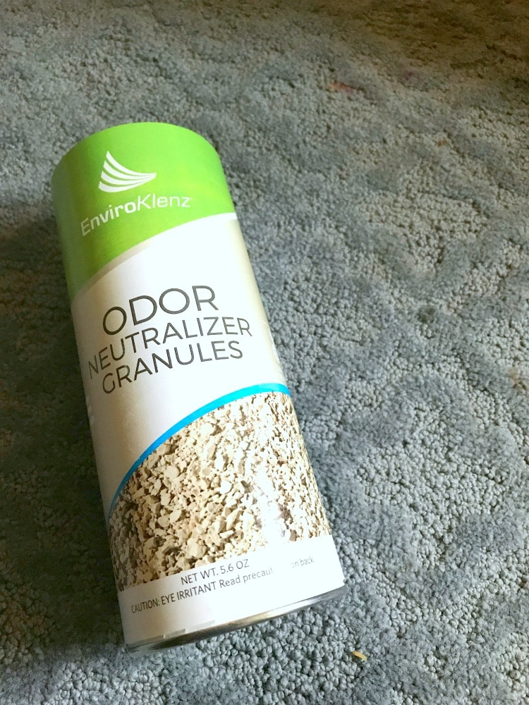 How To Get Vomit Smell Out Of Carpet >> How To Clean Throw Up Out Of Carpet Naturally Including The