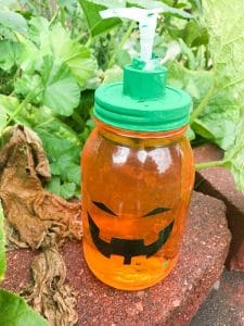 DIY Pumpkin Soap Dispenser