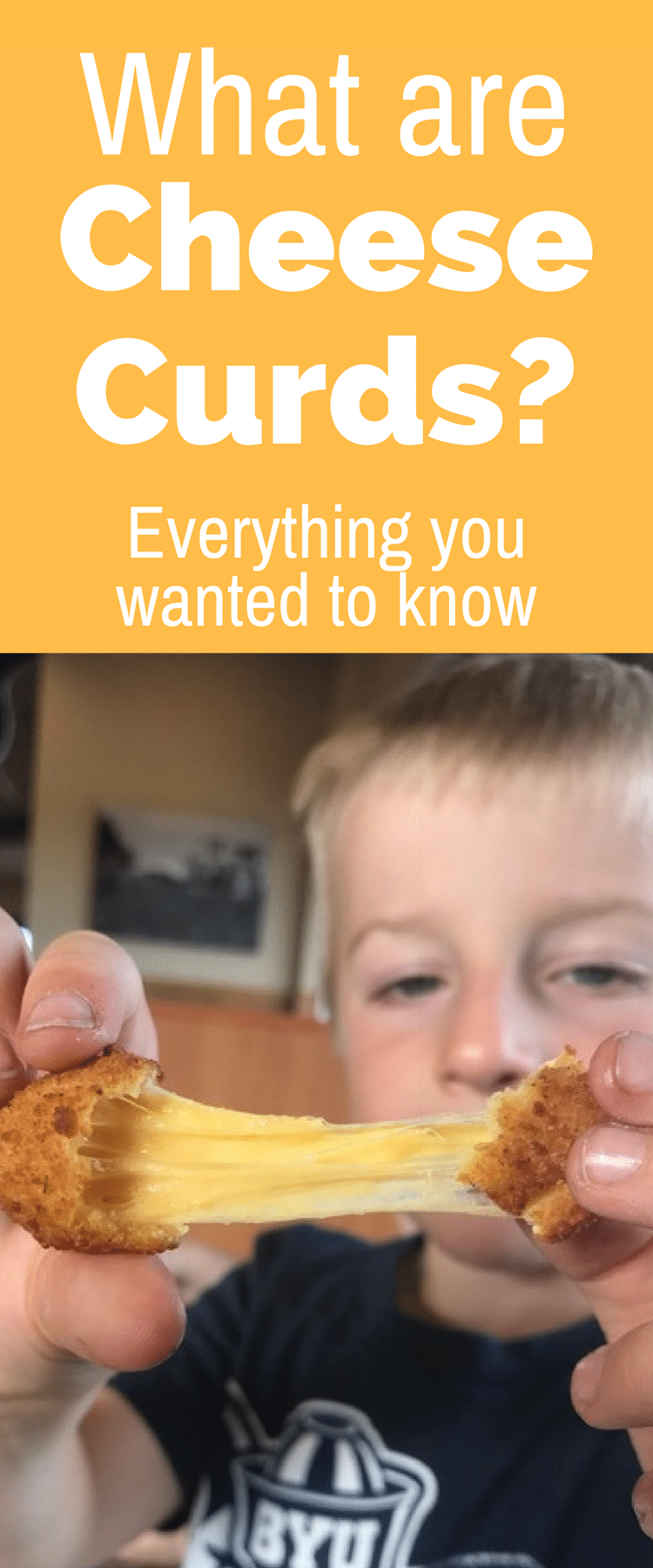 Cheese Curds / Fried Cheese Curds / Cheese Curd