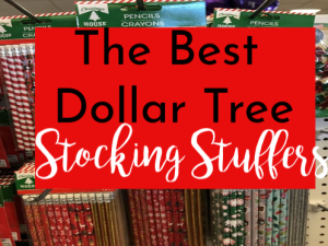 Our Favorite Dollar Tree Stocking Stuffers for All Ages (and Pets!)