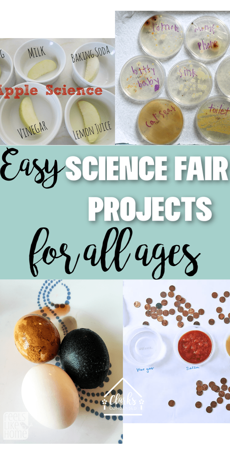 Science fair projects don't have to be a headache - here are tons of fun and easy science fair project ideas for all ages! via @clarkscondensed
