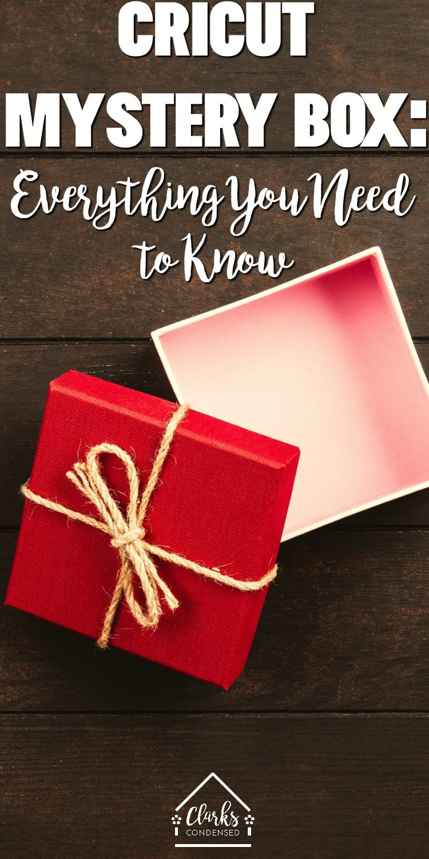 Cricut Mystery Box / What's in a Cricut Mystery box via @clarkscondensed