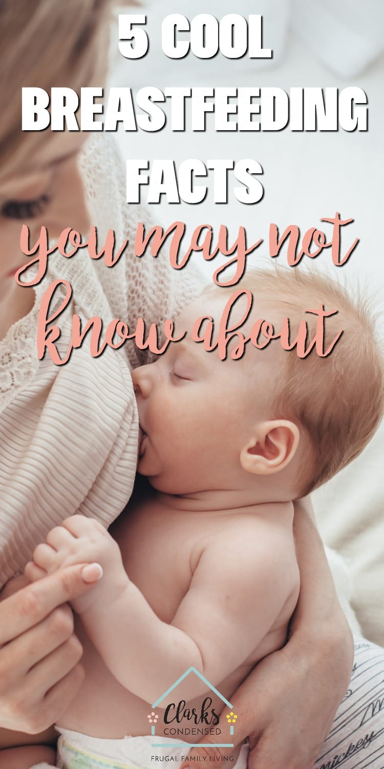 5 Breastfeeding Facts You May Not Know About #breastfeeding #breastmilk #newborn #baby via @clarkscondensed