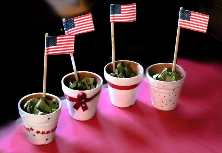 DIY Patriotic Plant a Flag for Freedom Craft » Sundaes & Flip Flops
