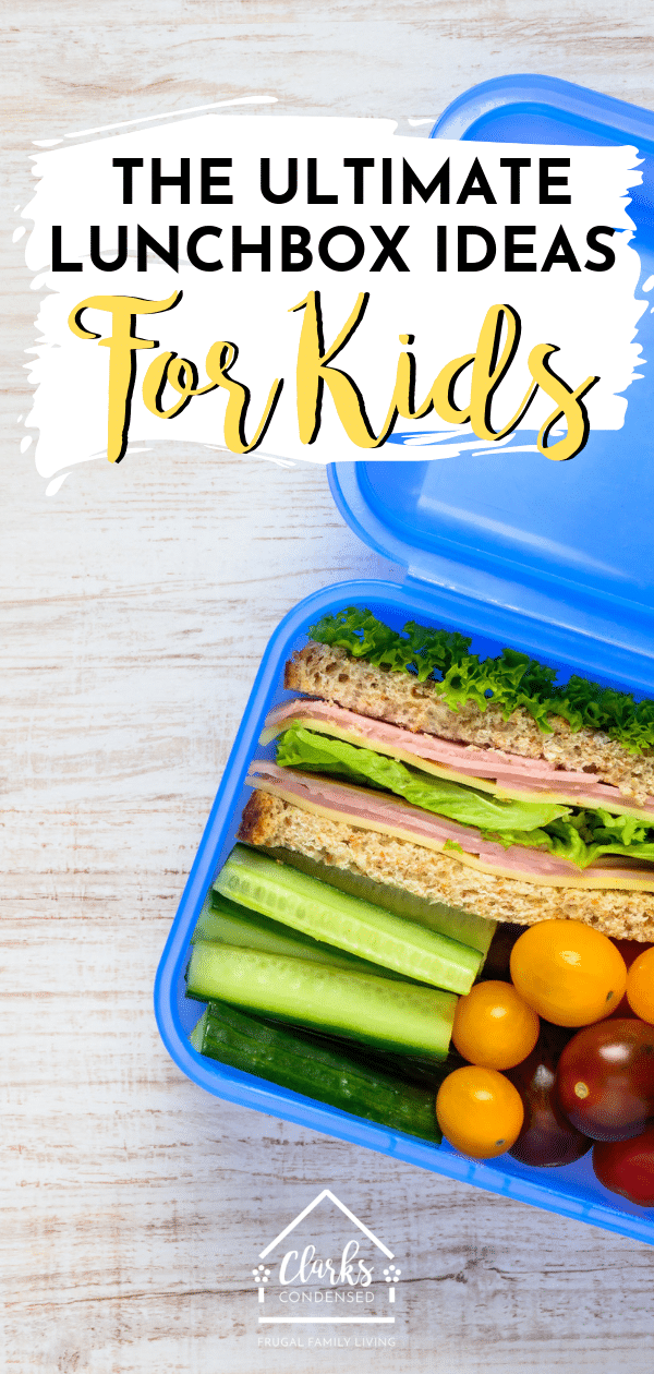Lunch box ideas / Lunch Box Ideas for Kids / School Lunch / Lunch Ideas / Lunch Ideas for Kids / Kid Lunch Ideas / non sandwich lunch ideas / sandwich ideas / kid lunches via @clarkscondensed