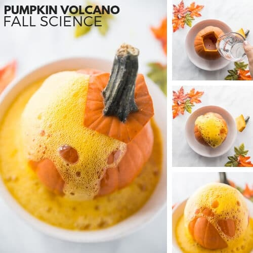 Pumpkin Volcano Perfect for Fall Science and Thanksgiving Activities
