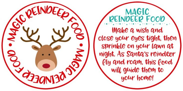 Magic Reindeer Food Ornaments and Free Printable
