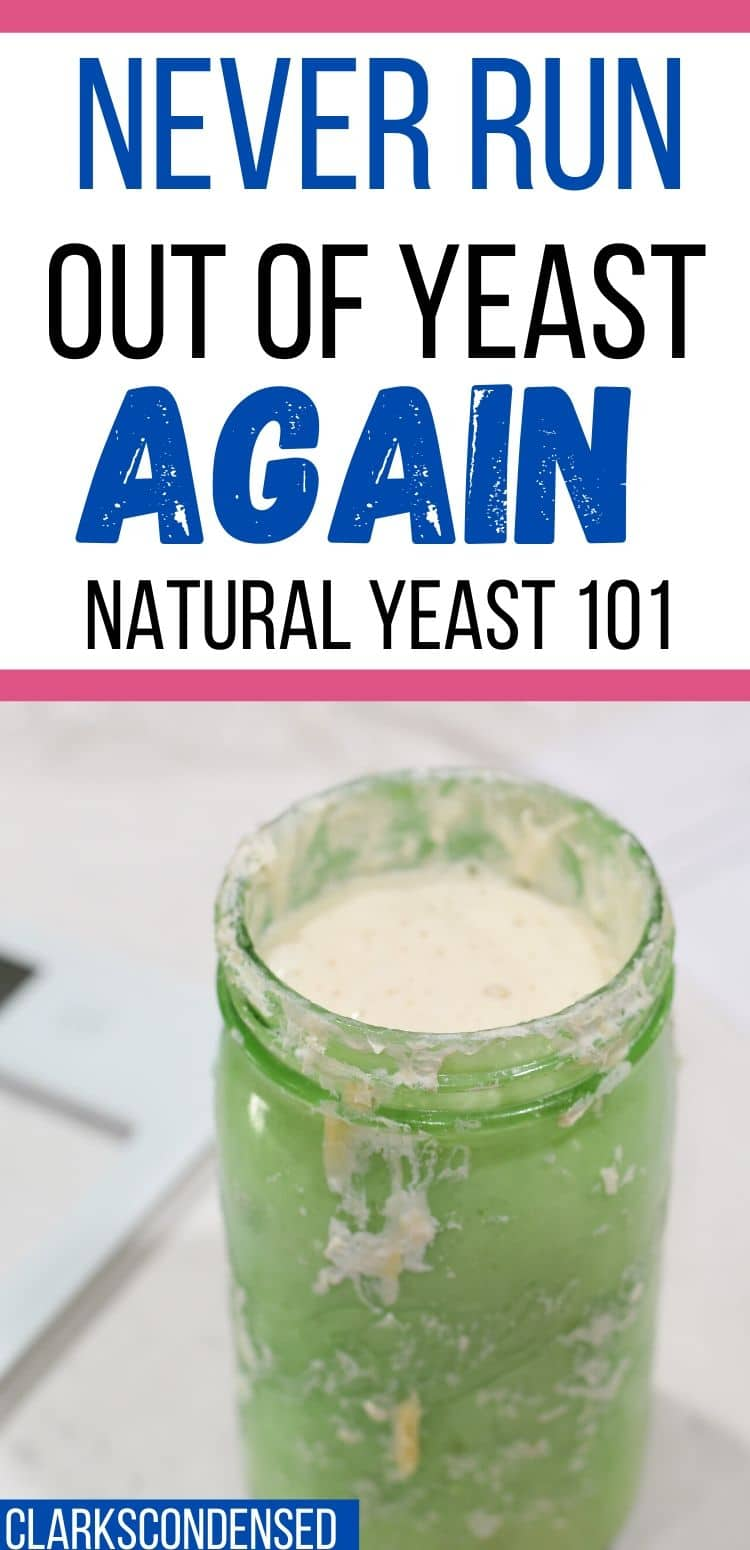 If you want to make and maintain your own sourdough starter but don't know where to start - here is a beginners guide to natural or sourdough yeast - including discard recipes, troubleshooting, how to feed sourdough starter, and how to store sourdough starter. Never run out of yeast again for all your bread making! via @clarkscondensed