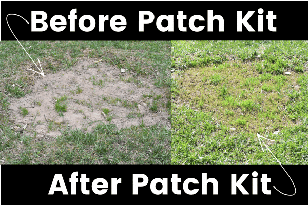 Sunday Lawn Care old patch new patch