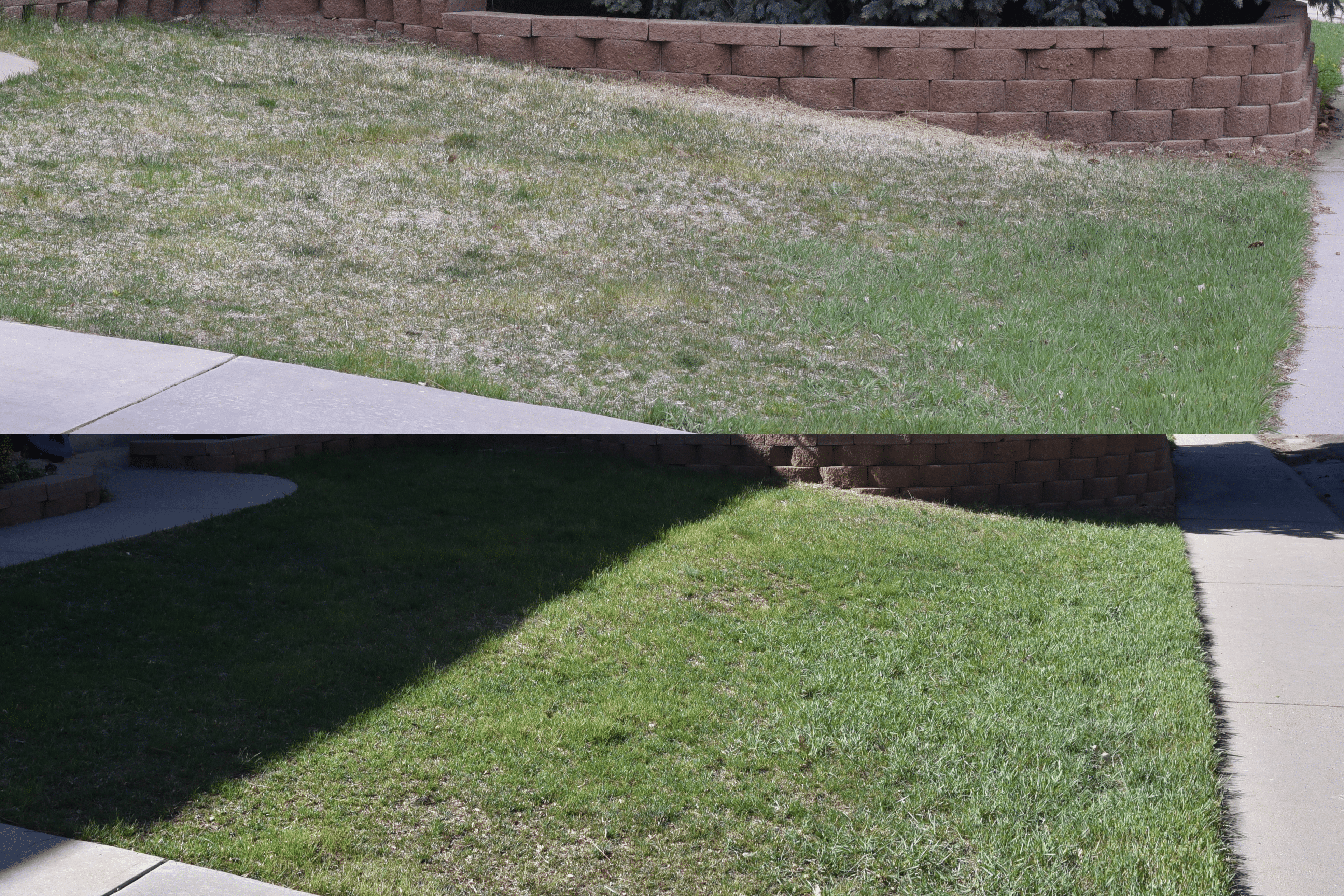 before and after of front yard