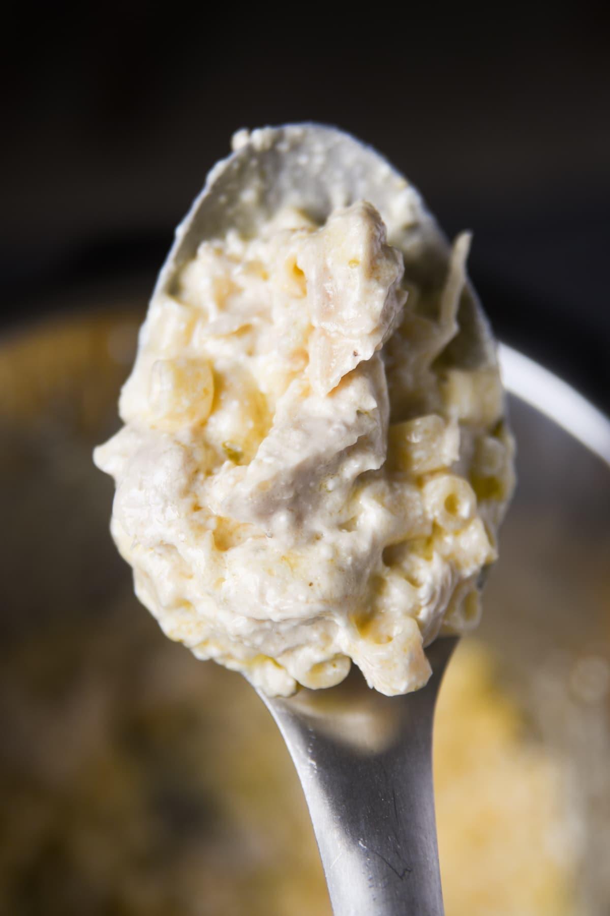 spoonful of creamy white chicken pasta