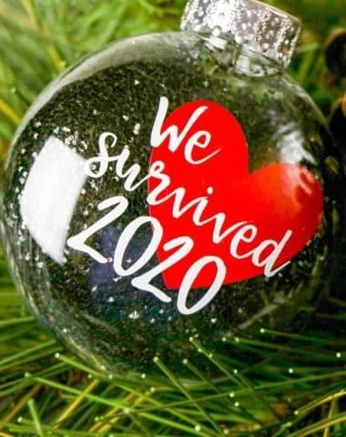 DIY We Survived 2020 Ornament