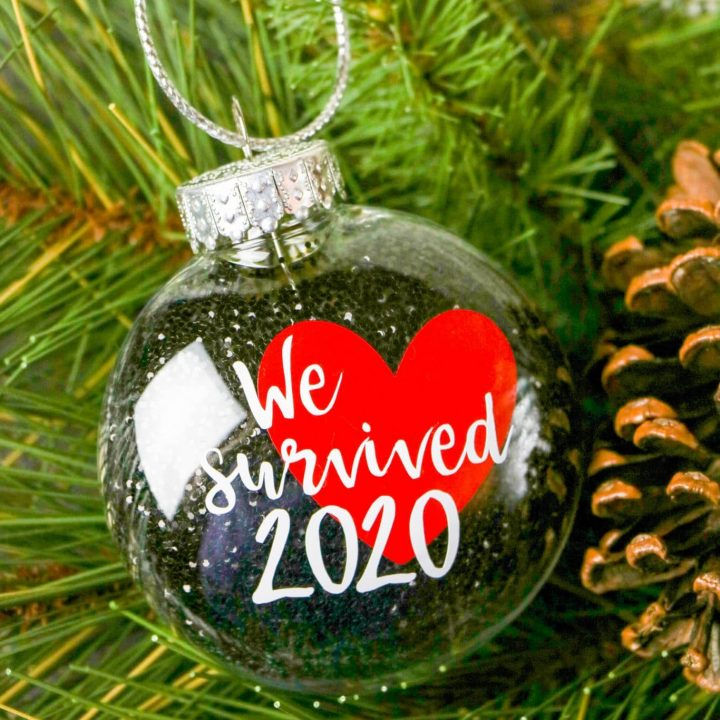We Survived 2020 Ornament-3